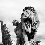 「善良なライオン」 アーネスト・ヘミングウェイ
