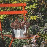 「庭の中で」 グレイス・ペイリー