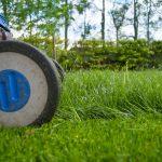 「午後の最後の芝生」 村上春樹