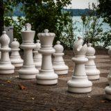 チェスで得た教訓。