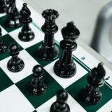 チェス オープニングの定跡選び、の話